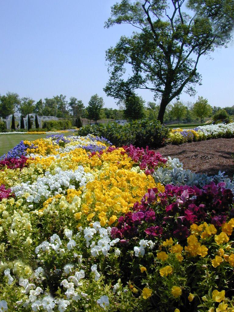 GGHF Gardens1