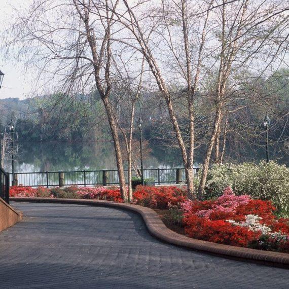 Enterprise Mill Augusta Ga Apartments: MARKET CREATION PROJECT: AUGUSTA CANAL